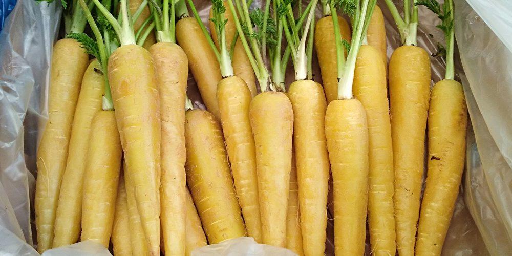 Zanahorias Comida Critica Cómo hacer zanahorias glaseadas, una guarnición curiosa. comida critica